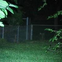 L1D li-ion fence