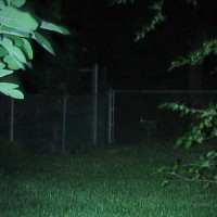 Fence L1D NiMH