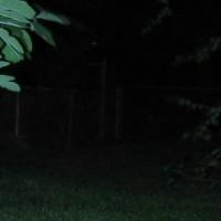 AKOray K-106 R5 fence