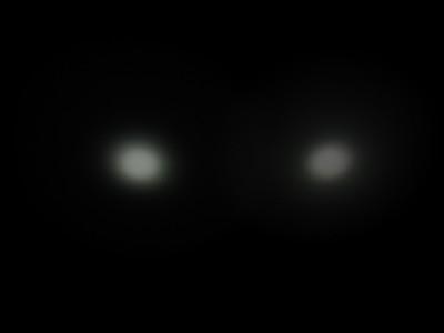 Quark vs. Aurora 1/1600th second