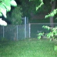 Fence WF-1200L P7 LED